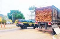 PRF apreende caminhão com madeira ilegal na BR-010 em Imperatriz
