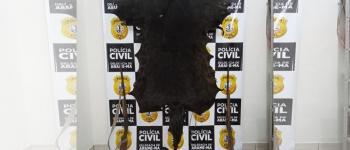 Homem que se vangloriou em ter abatido uma onça negra é preso pela Polícia Civil em Arame