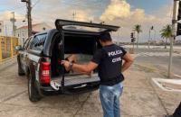 Operação da Polícia Civil prende acusados de crimes sexuais em São Luis e Área Metropolitana