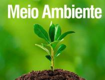 Nova condenação de réus denunciados pelo MPTO por fraudes em relocação de reservas legais para desmatamento ilegal de fazendas é mantida pelo TJ