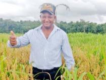 Agricultura Familiar avança com adoção de tecnologias produtivas