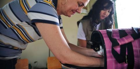Pesquisa investiga transmissão de covid-19 entre homens e animais