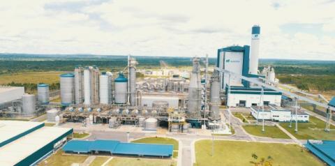 Suzano vende 2,8 milhões de toneladas de celulose e papéis no segundo trimestre de 2021