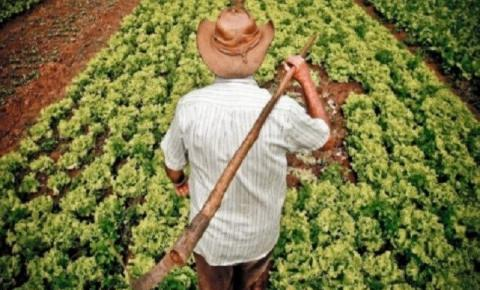Agricultores familiares já podem participar da segunda etapa de propostas para o Programa de Aquisição de Alimentos