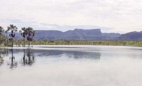 Plano de preservação de espécies ameaçadas  do cerrado abrange 22 municípios do Tocantins