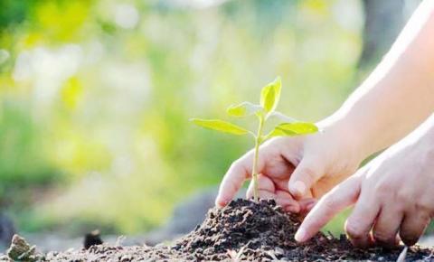 Projeto do Fundo Vale busca soluções inteligentes para desafios ambientais