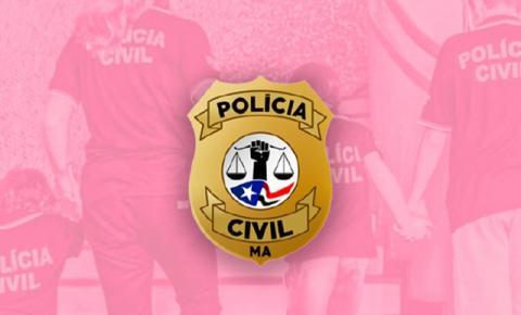 Mães policiais civis do Maranhão. A determinação delas entre a farda e a maternidade