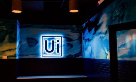 UiPath é nomeada Líder e Star Performer pela PEAK Matrix® do Everest Group na categoria Mineração de Processos