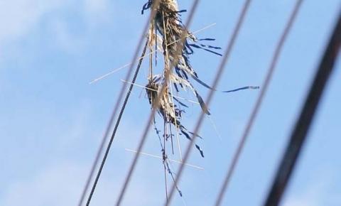 Maranhão já registra mais de 400 ocorrências envolvendo pipas na rede elétrica em 2021