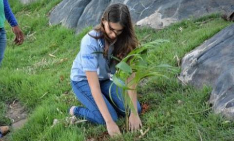Semana do Meio Ambiente de Araguaína inicia nesta segunda feira, 21