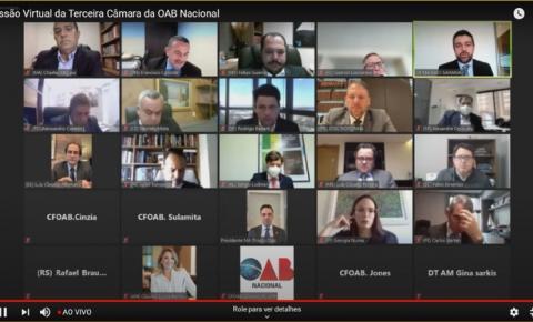 Conselho Federal destaca trabalho da OAB/MA