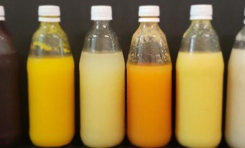 Parceria entre UFMA e UFC cria o primeiro néctar de frutas probiótico